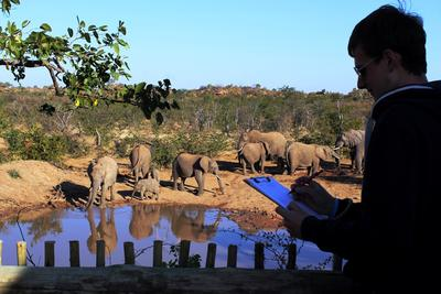 Projects Abroad在博茨瓦納環保項目的其中一個工作是辨認大象