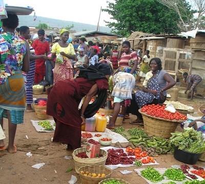 Projects Abroad在非洲的國際發展實習項目