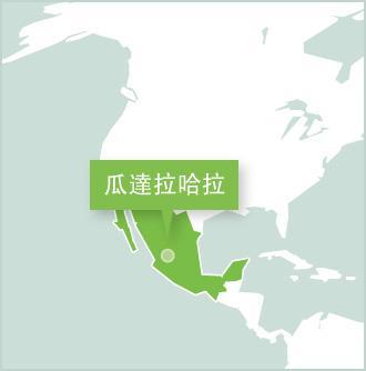 瓜達拉哈拉是城市地圖,Projects Abroad在瓜達拉哈拉設立志工項目。