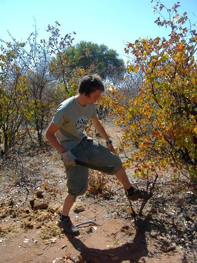 志工在南非環境保護項目清理野生叢林