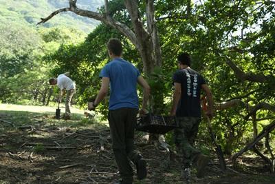 志工參與Projects Abroad環保項目在拉丁美洲及加勒比海保護自然叢林