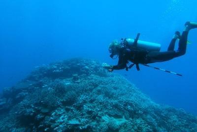 Projects Abroad志工參與南太平洋環境保護項目在靠近海洋的區域工作