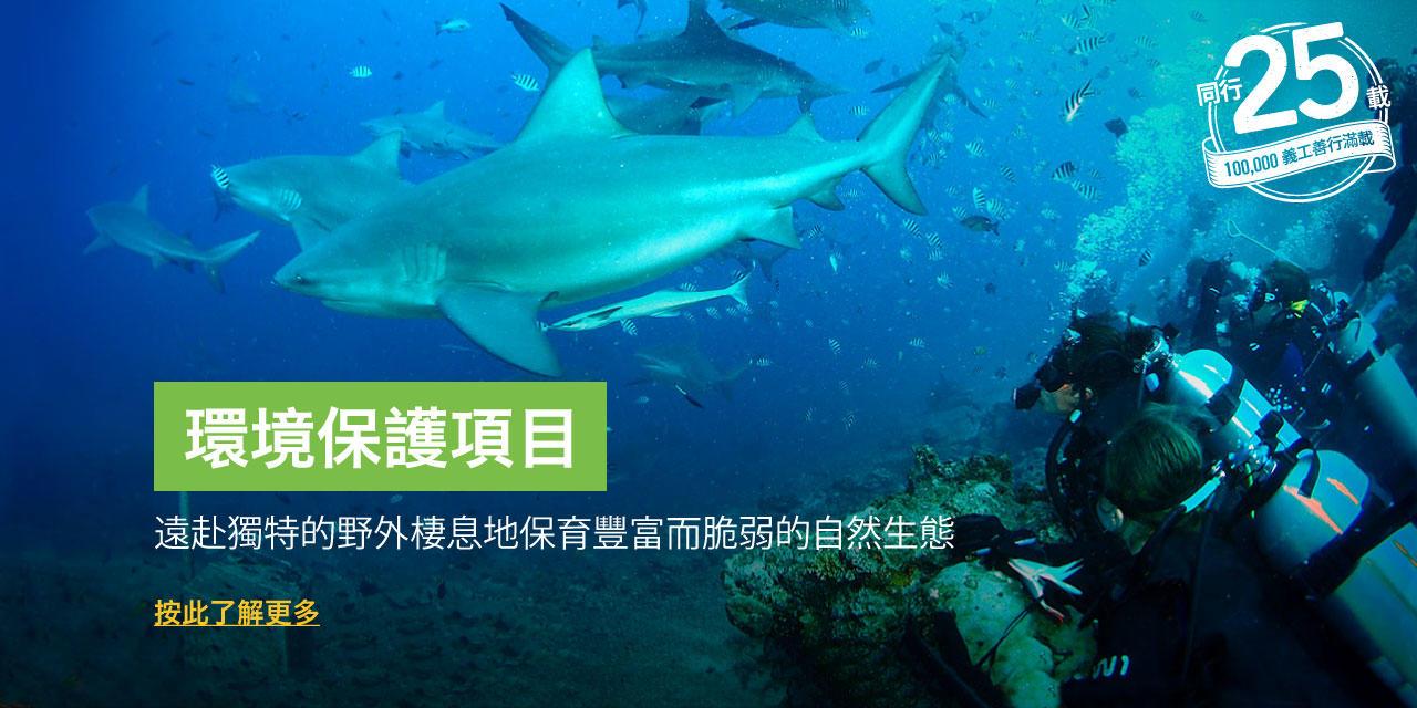 參與國外的環境保護志工項目