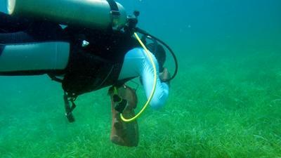潛水志工參與貝里斯的環保項目,進行海底清理垃圾的工作