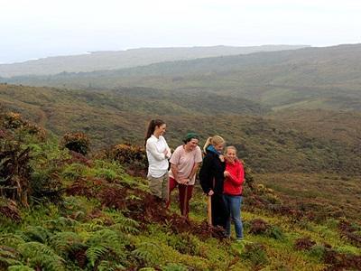 環保志工在加拉帕戈斯群島的Languna del Junco高地,控制外來植物品種的繁衍