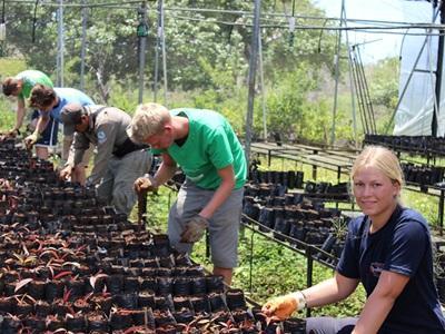 志工在厄瓜多爾的環保項目協助培養樹苗