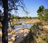 鳥類數目報告——2015年2月KwaTuli水道系統地區