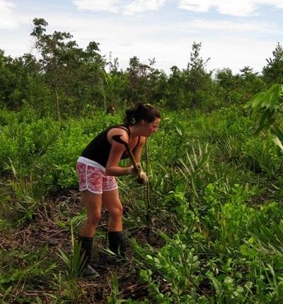 間隔年學生參與泰國環境保護工作
