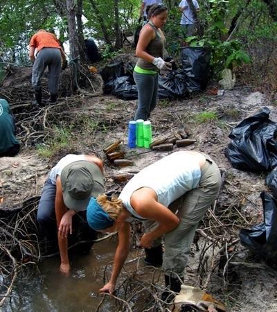 間隔年志工參與泰國環保項目,幫助清潔當地紅樹林的生態環境