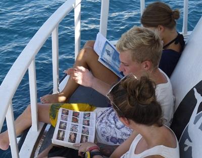 Projects Abroad志工正在學習各種在鄰近泰國喀比水域會看到的魚類品種