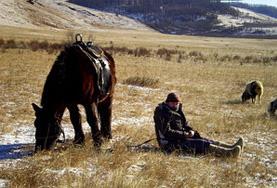 國際志工 蒙古