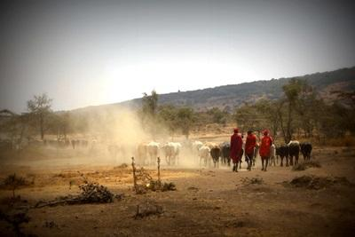 參與Projects Abroad坦桑尼亞的志工項目