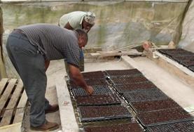 國際志工 農業及耕種項目