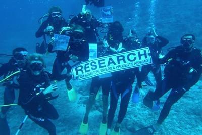 : 斐濟鯊魚保育項目的志工幫助進行鯊魚研究,為海洋保育工作帶來貢獻