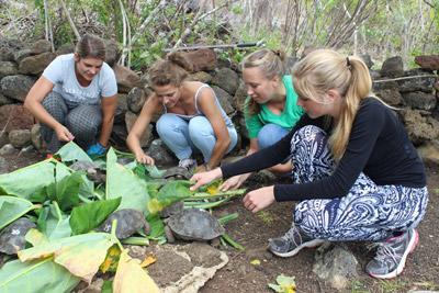 年輕的高中生志工為厄瓜多爾的野生物種提供食物