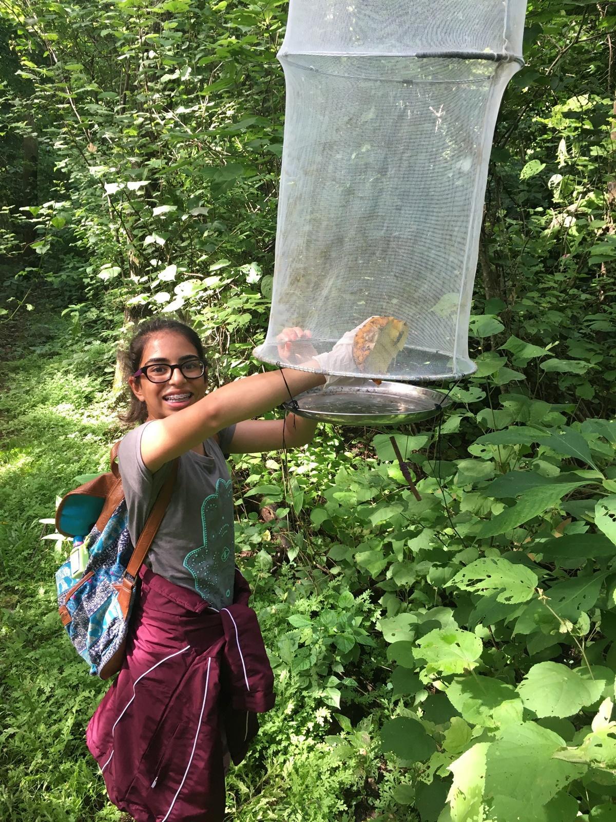 環保志工在哥斯達黎加捕捉和觀察蝴蝶進行記錄