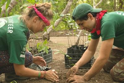 Projects Abroad志工在哥斯達黎加巴拉翁達國家公園園區範圍和員工一起種植樹苗