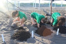 Volunteer 環境保護志工營