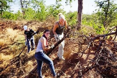 適合高中生參加的南非及博茨瓦納環保志工工作
