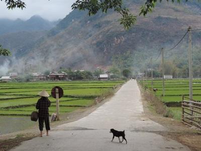 越南風光如畫的自然景色