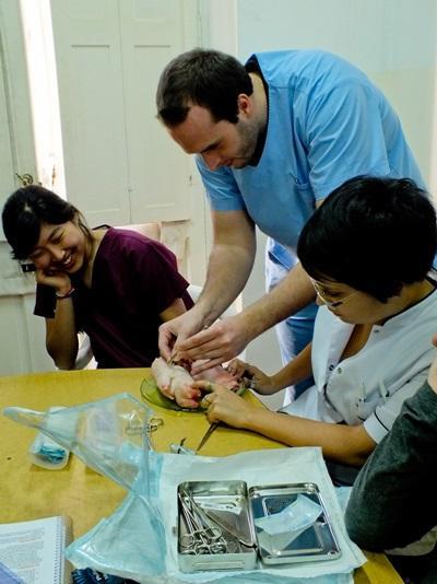 Projects Abroad在阿根廷的國際醫學選修項目