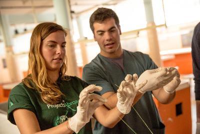 Projects Abroad醫學實習生在阿根廷解剖博物館舉行的一個醫療工作坊練習縫合技術