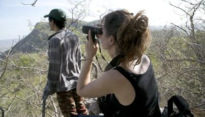Projects Abroad環保志工在哥斯達黎加的巴拉翁達國家公園研究雀鳥