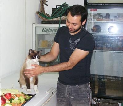 在海外進行動物志工工作,實習生在一所關愛中心照顧當地動物