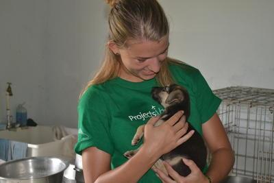 小狗獲得動物關愛項目志工的悉心照顧