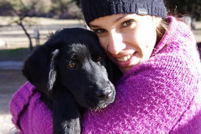 在阿根廷動物關愛志工營幫助照顧庇護所的狗狗